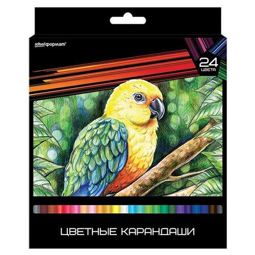 Формат Набор цветных карандашей 24 цвета Дикая планета (КЦ24-ДП)