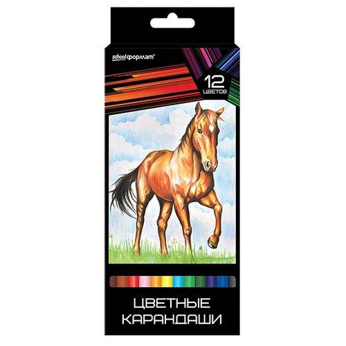 Формат Набор цветных карандашей 12 цветов Дикая планета (КЦ12-ДП)