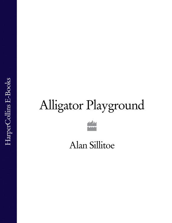 Alligator Playground