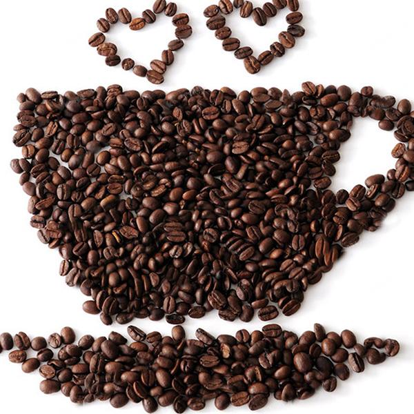 Шт / упаковка Кофе в зернах Семена Сад Органический освежающий бонсай кофе Растение Семя