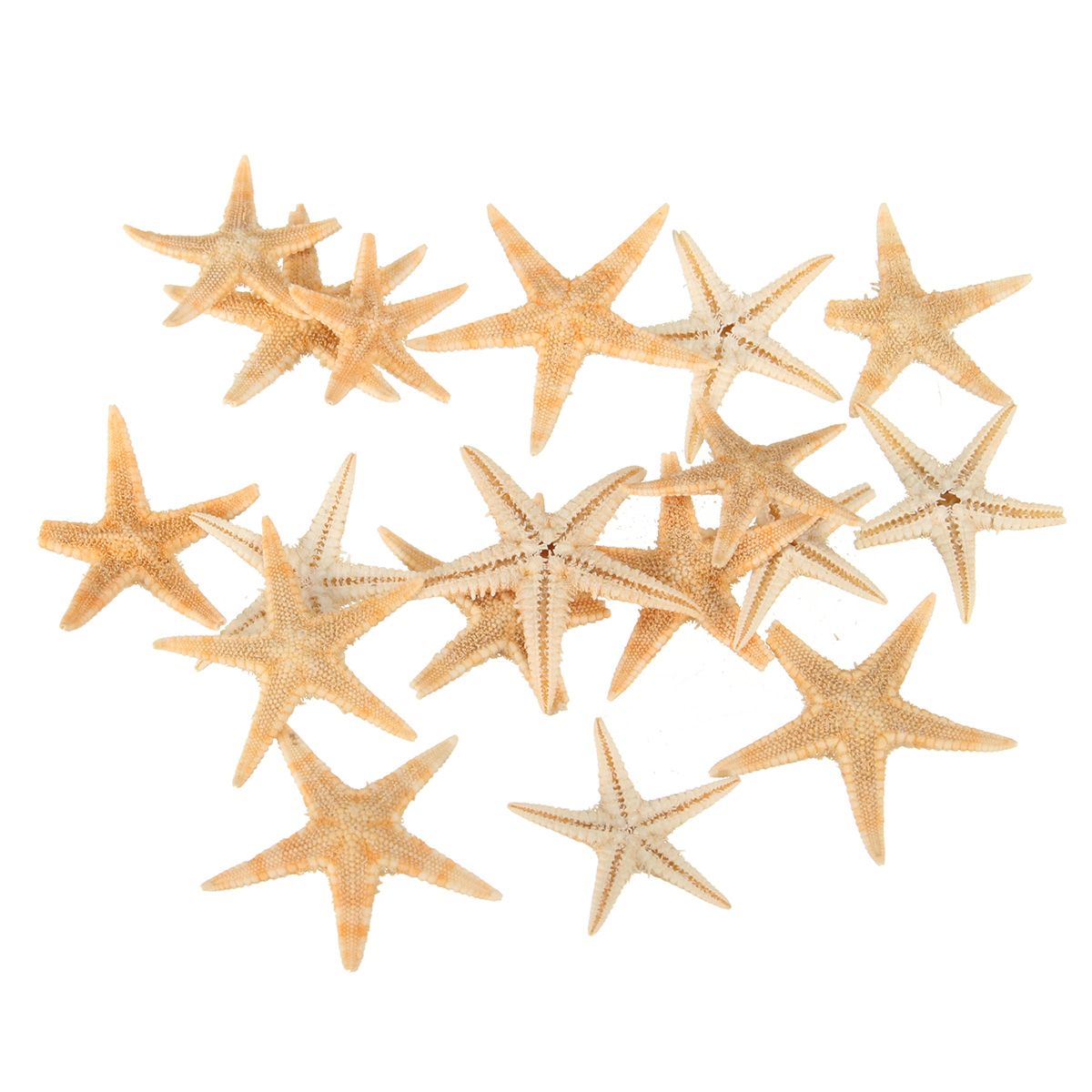 Шт мини морская звезда морская звезда ракушка пейзаж Пляжный Свадебное DIY ремесла изготовление украшений
