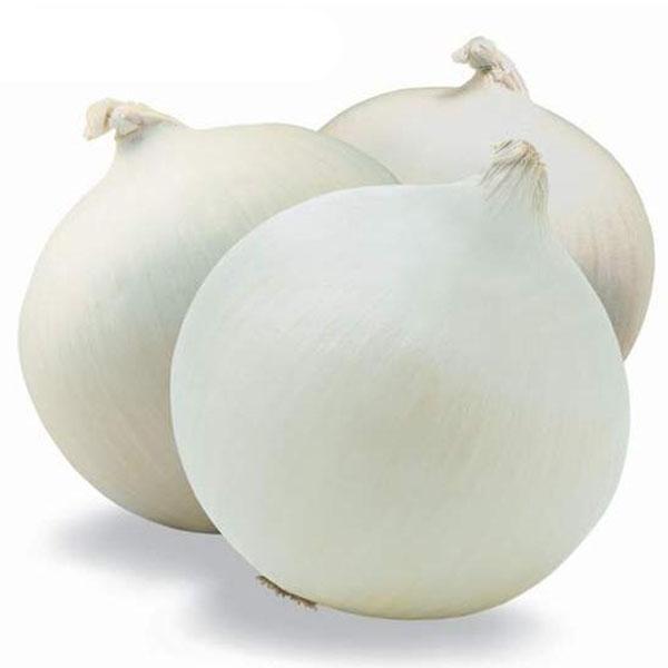 Шт. / Шт. Белый Лук Семена Кулинарное семя Органическое растительное семя Сад DIY Растения